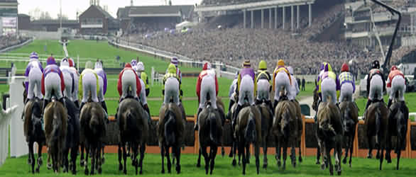 3 night Cheltenham tour